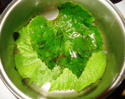 Put 2-3 leaves on the bottom of the pot.
